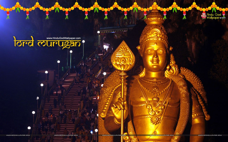 Lord Murugan Hd Wallpaper For Desktop Pc Download Golden Gods In