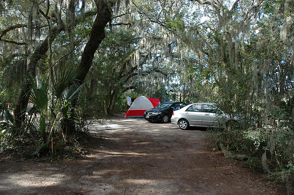 Little Talbot Island   Florida state parks, State parks ...