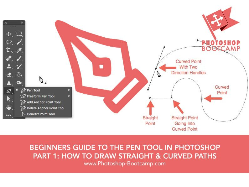 Beginners Guide To The Pen Tool In Part 1 How