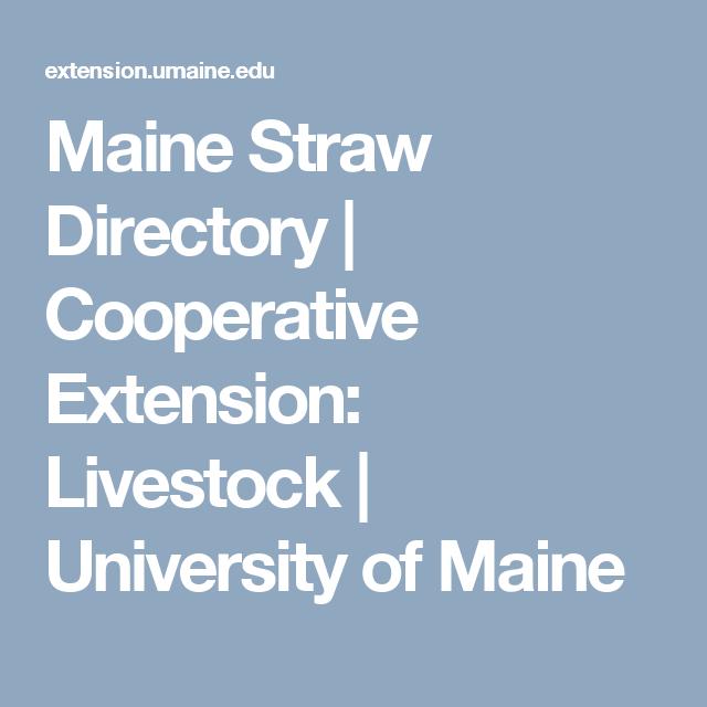 Maine Straw Directory   Cooperative Extension: Livestock   University of Maine