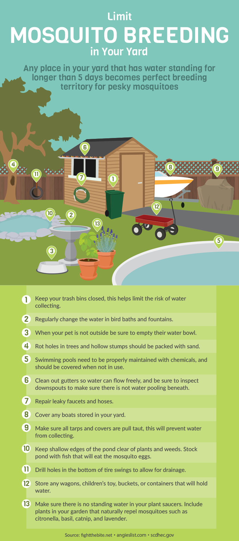 a guide to mosquito borne illnesses backyard