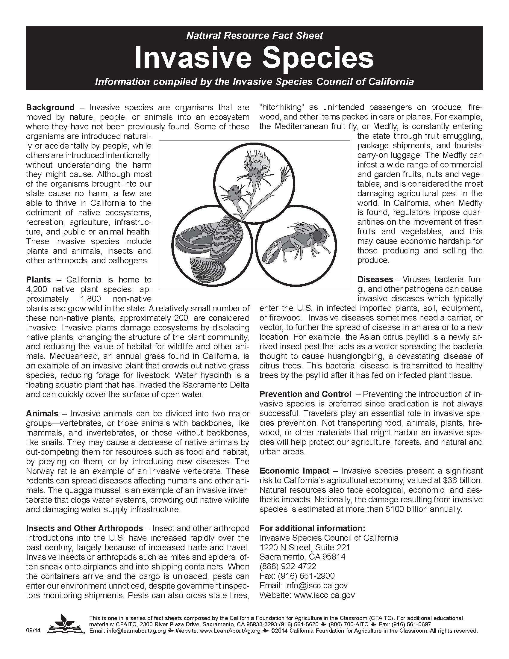 Invasive Species Worksheet   worksheet