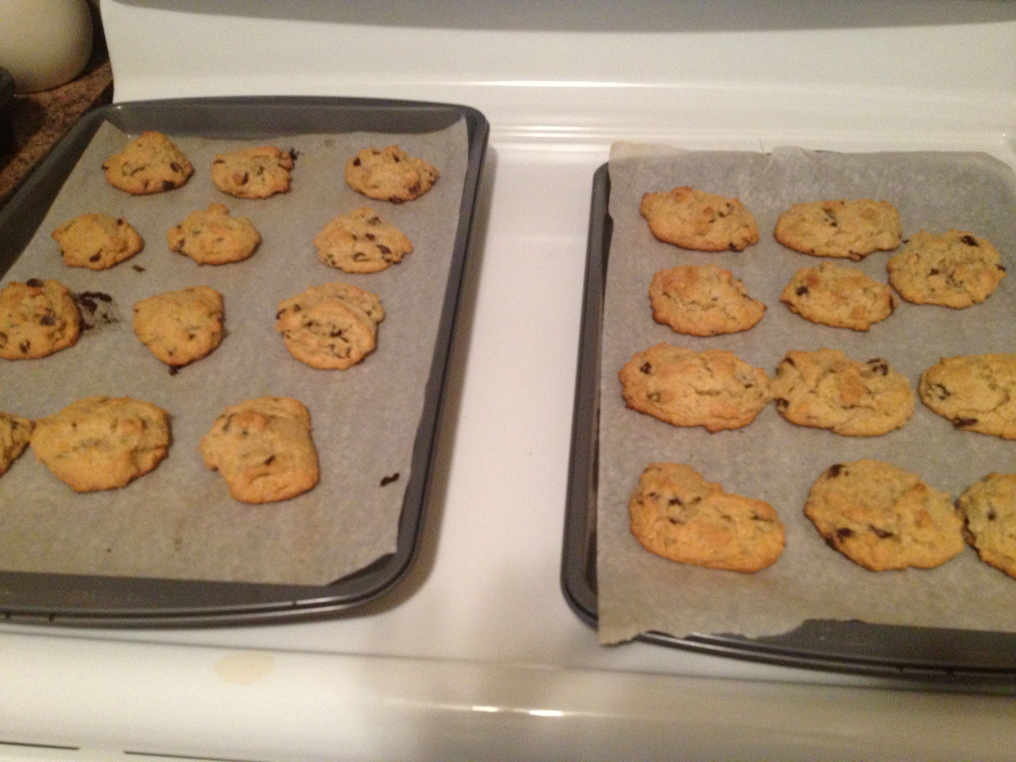 Chocolate Chip Cookies from Make it Paleo Remember these are a treat!