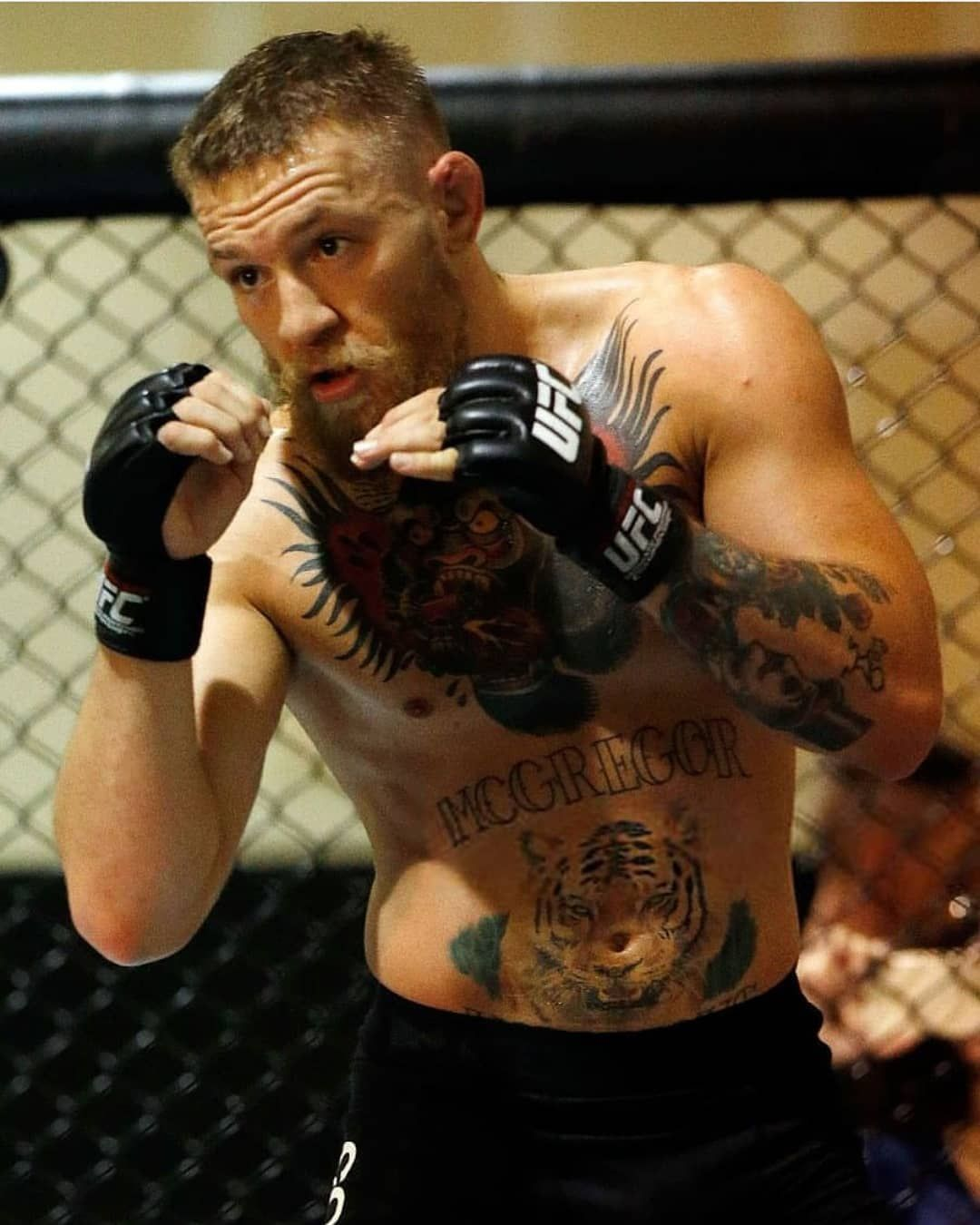 Pin By Curtis Bright On Mcgregor In 2020 Ufc Conor Mcgregor Coner Mcgregor Notorious Conor Mcgregor