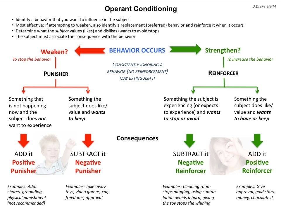 examples of operant conditioning An example of this type of operant conditioning is a parent rewards a child for completing his chores with a piece of candy the child starts associating chores with candy, and as a result, he does his chores more reliably and enthusiastically in the hopes of earning more.