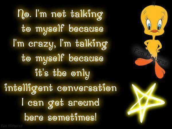 Talking To Myself Funny Quotes Quote Lol Funny Quote Funny Quotes