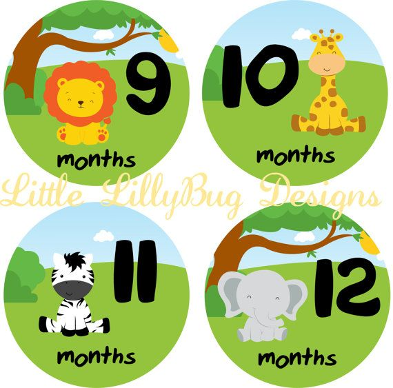 baby month stickers baby monthly photo stickers month sticker baby
