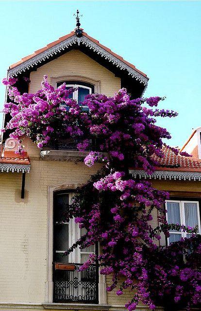 Portogallo,Sintra Portugal