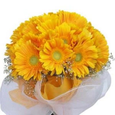 Hand Bunch Of 10 Yellow Geraberas With Net Cloth Wrapping You Can Choose Any Colour Of Gerabera Flowers Send Roses Gerberas Online Flower Delivery