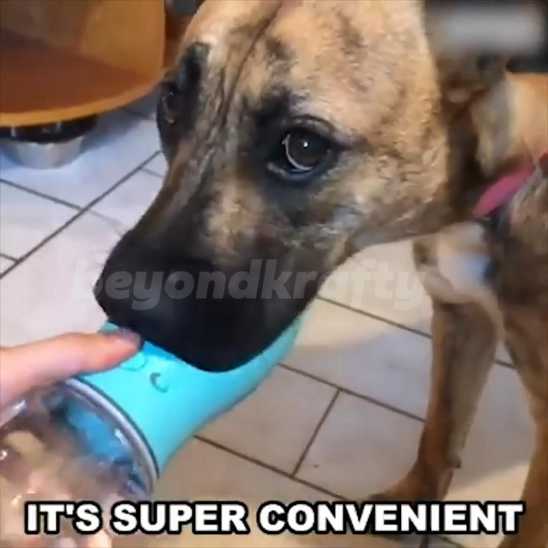 The Ultimate Water Bottle For Your Dog A Discount Of 50 Video In 2020 Diy Dog Stuff Pet Hacks Dogs