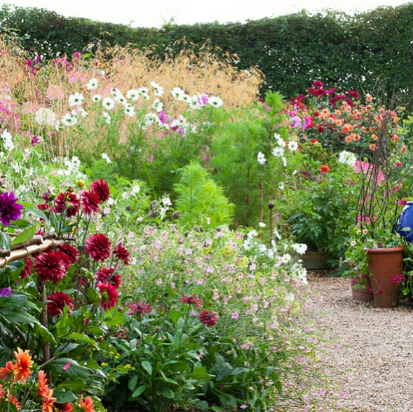 Cottage garden landscape design ideas  Sarah Raven  potager  Pinterest  Ravens Gardens and Flowers