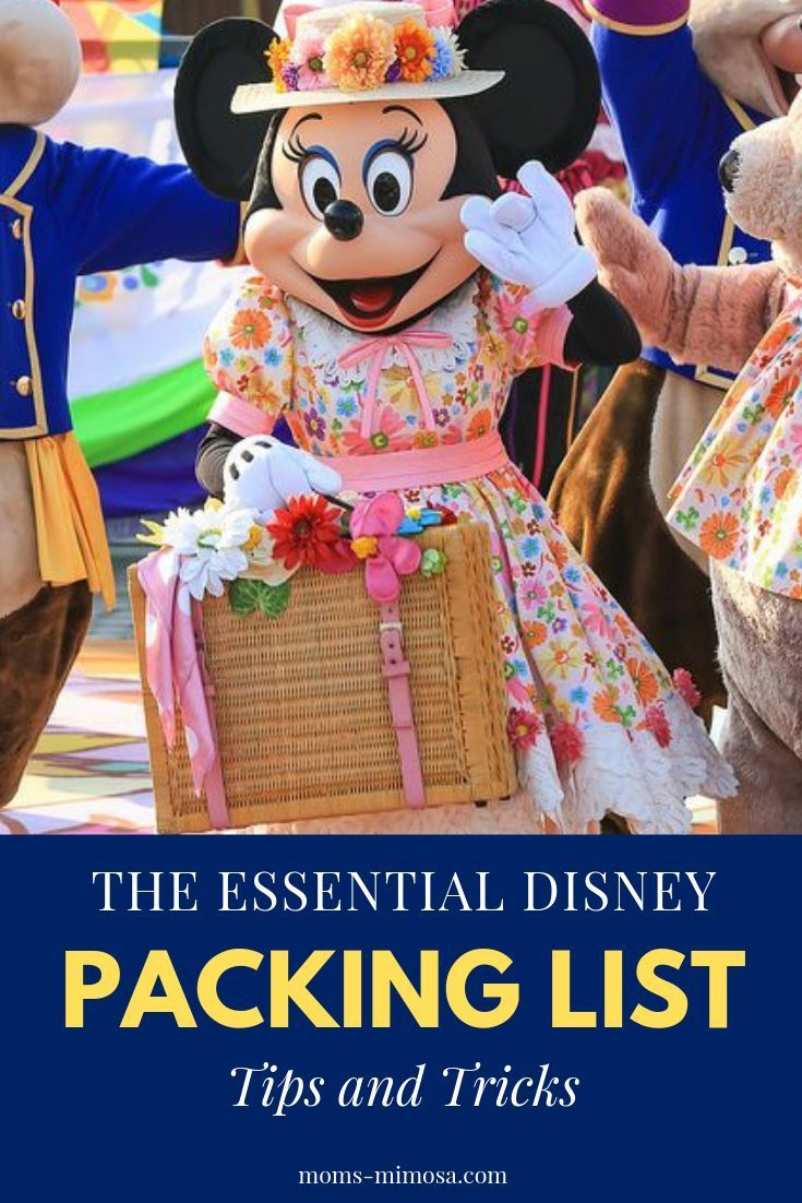 Disney Packing List Tips and Tricks | Mom's Mimosa