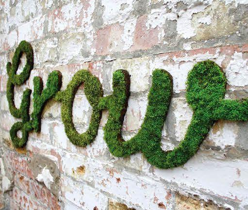 Volg hierdie maklike stappe om mosletters en -woorde te maak, sowel as mosgraffiti vir buiteruimtes – dit is die perfekte neiging vir die lente! Saamgestel deur Jeani Louw
