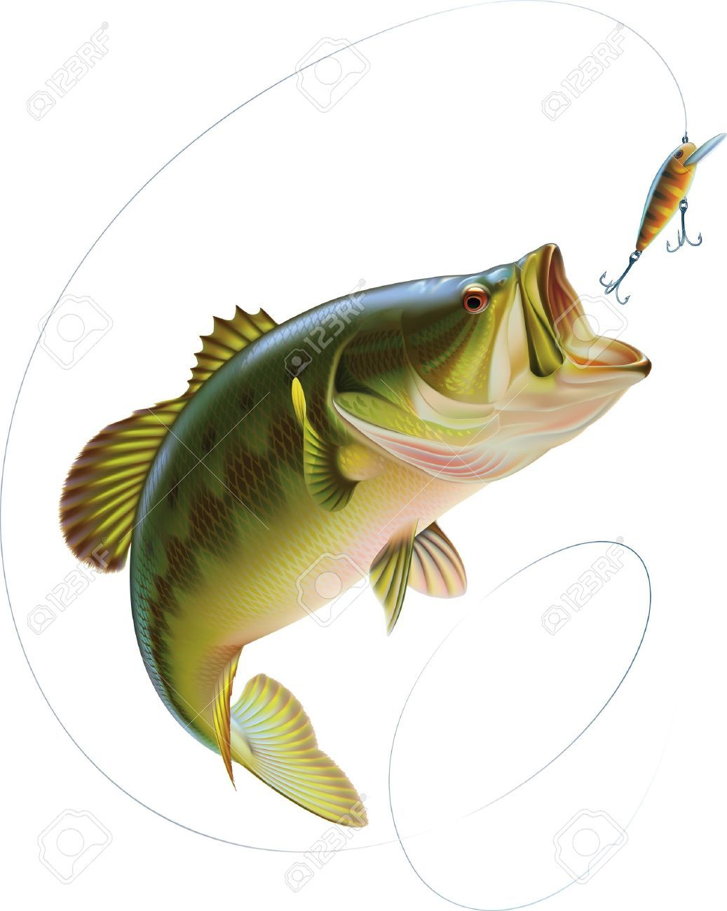 hight resolution of bass jumping out of water clipart 65