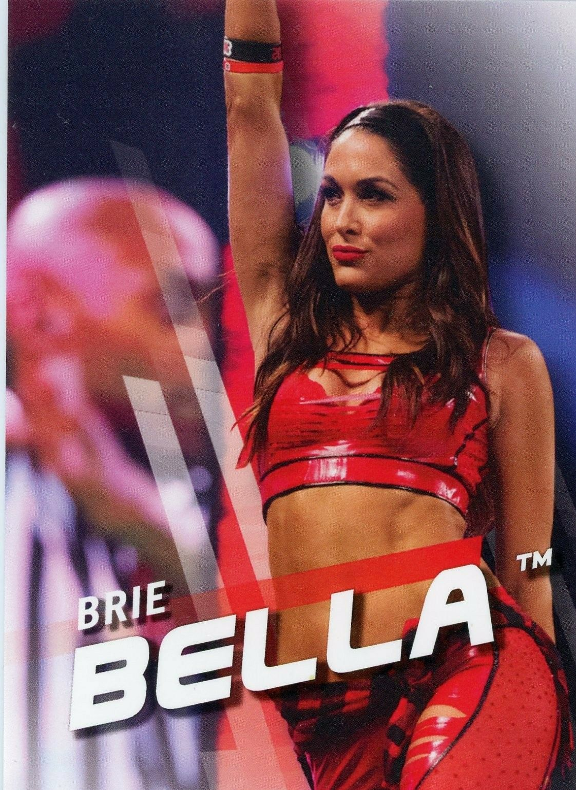 Pin By Matthew Begg On Bella Twins Nikki And Brie Brie Bella Nikki And Brie Bella Nikki Bella