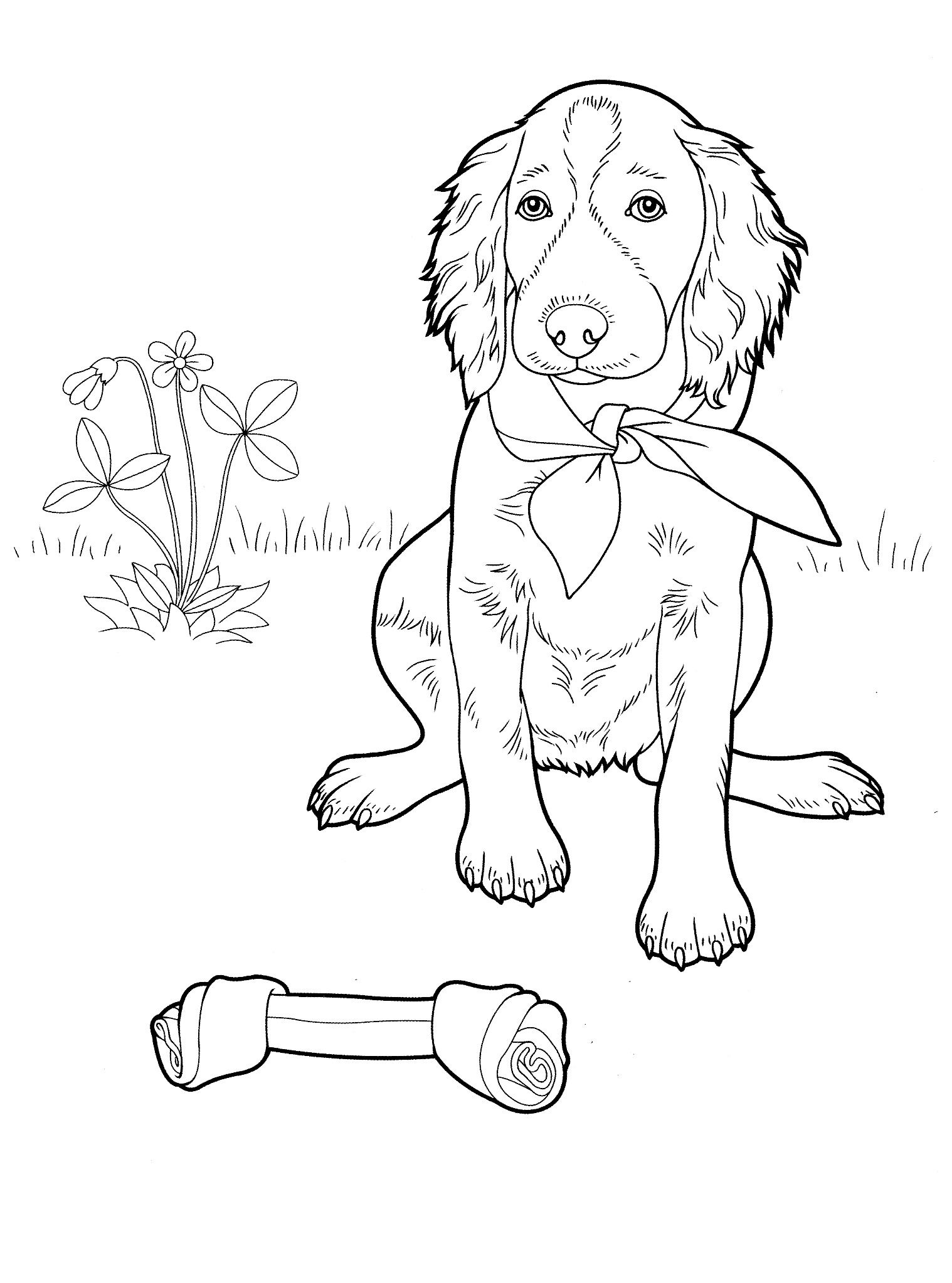 dog_coloring_pages_17 Teenagers coloring pages Puppy
