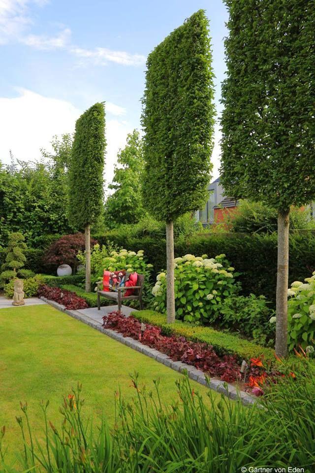 Spalierbäume geben Struktur und bieten Sichtschutz im