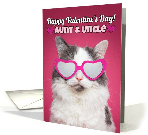 Happy Valentines Day Aunt Uncle Cute Cat In Heart Sunglasses Card