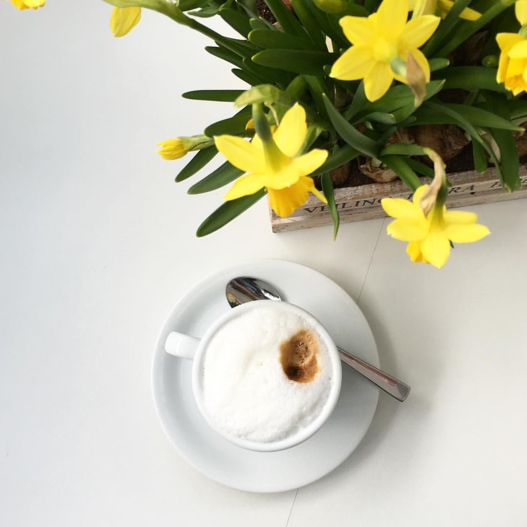 "sicurini CAFFE' auf Instagram: ""Cappuccino  #sicurini #sicurinicaffe #mobilescafe @sicurini #cappuccino #espresso #caffe #caffelatte #lattemacchiato #kaffee #coffee #coffeeeu @coffee.eu #coffeexample @coffeexample #flatlay"""