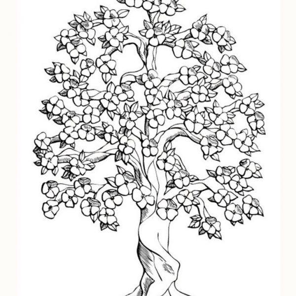 Arbol De Cerezo Dibujo Arreglo Floral Pinterest árbol De