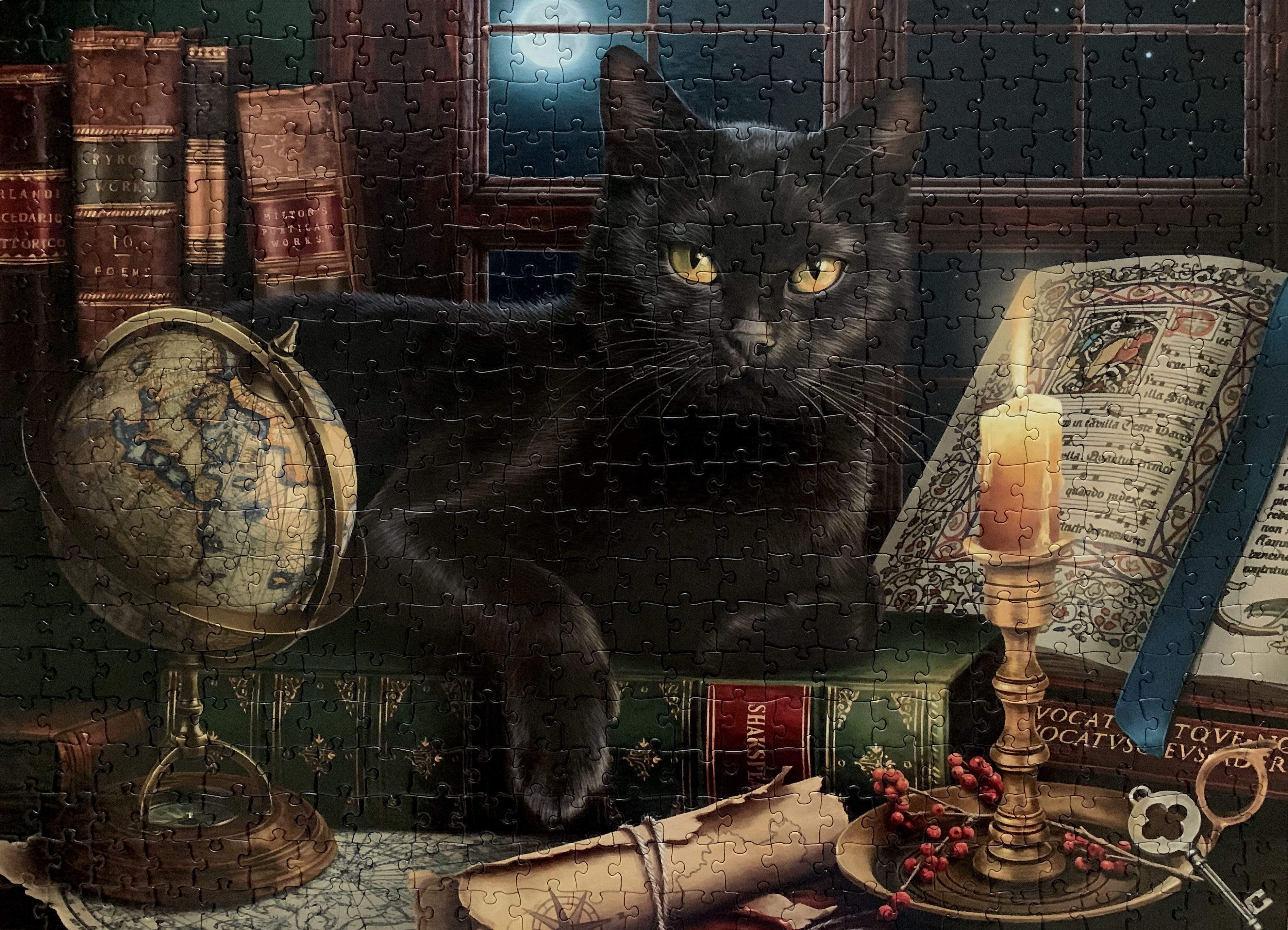 Black Cat By Candlelight, art by Image World, release year