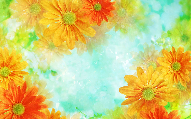 HD Background Wallpapers 8 | HD Background Wallpapers | Pinterest ...