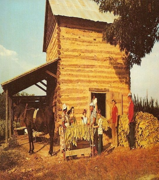 Rustic Basement Love This Looks Like An Old: Old Tobacco Barn & Workers. I Love Old Tobacco Barns. This