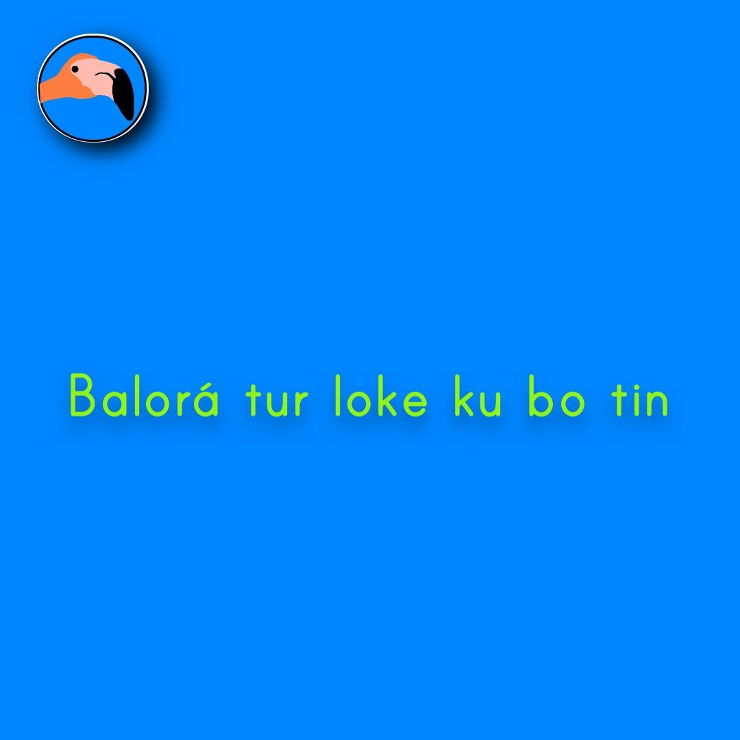 Appreciate all that you have | Balorá tur loke ku bo tin! For translation services contact us at info@henkyspapiamento.com  #papiamentu #papiaments #papiamento #creole #language #curacao #bonaire #aruba #caribbean #appreciate #waarderen #apreciar #have #hebben #tener #ter More learning materials available at henkyspapiamento.com