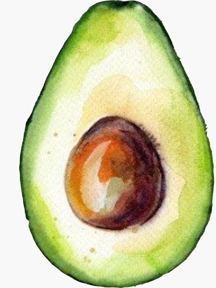 'Watercolor Avocado' Sticker by Jackie Sullivan