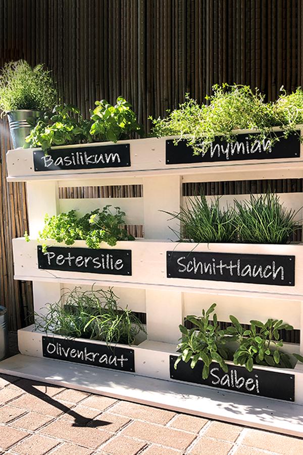 Garten Krauterbeet Aus Paletten Selber Bauen In 2020 House Plants Indoor Vegetable Garden Design Hydrangea Care