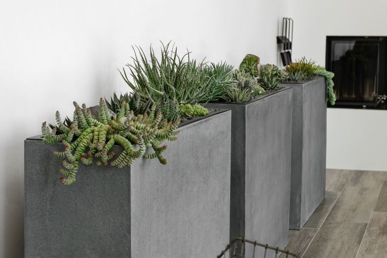 Pflanzkubel Raumteiler Fiberglas Elemento Beton Design