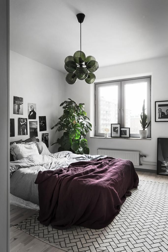 Stor växt i sovrummet Light Pinterest Dormitorio, Decoración y - decoracion de interiores dormitorios