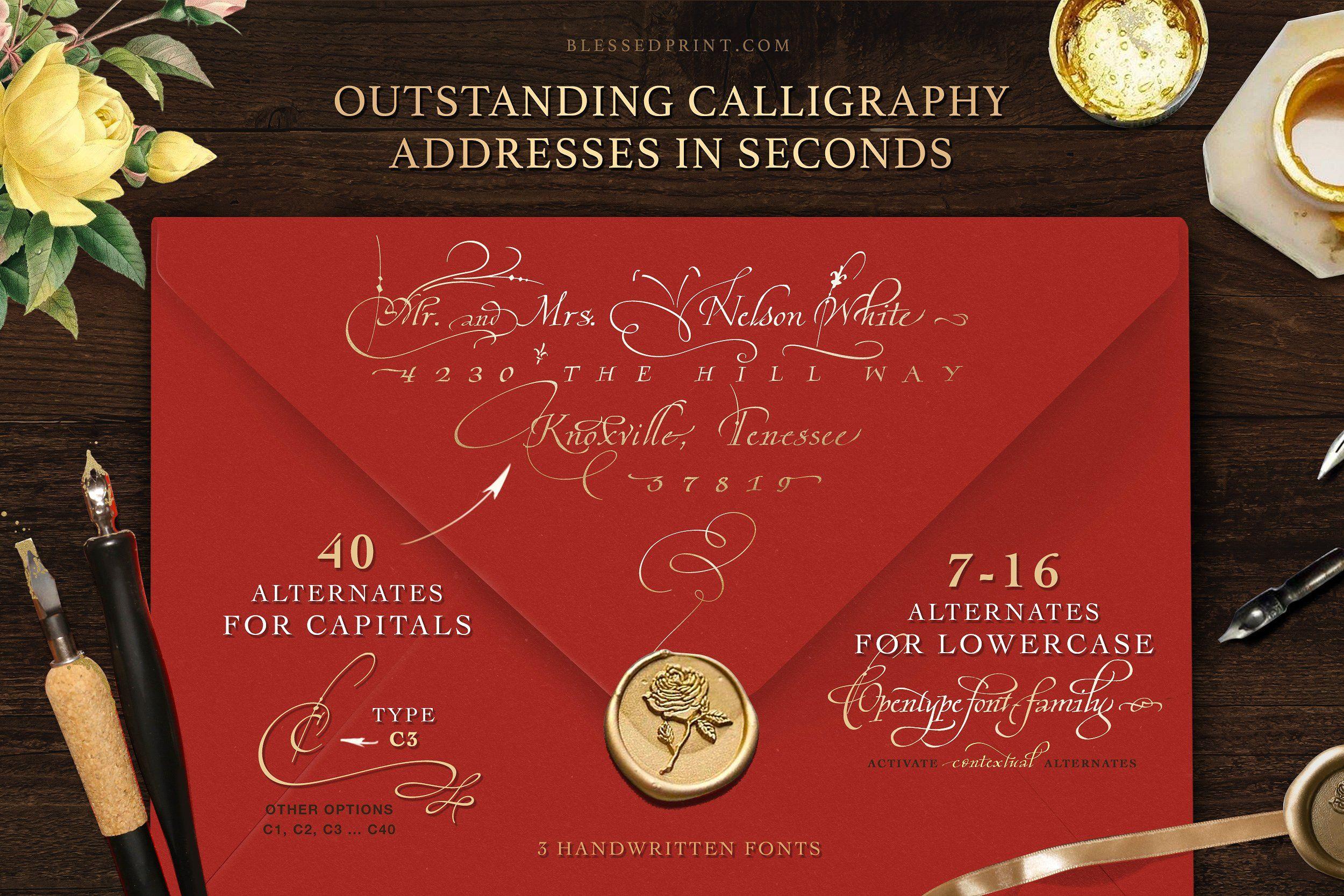 Cardinal - Italic script trio | Cardinals, Professional fonts and ...