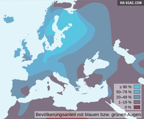 Distribution of blue eyes in europe best of 9gag pinterest distribution of blue eyes in europe gumiabroncs Choice Image