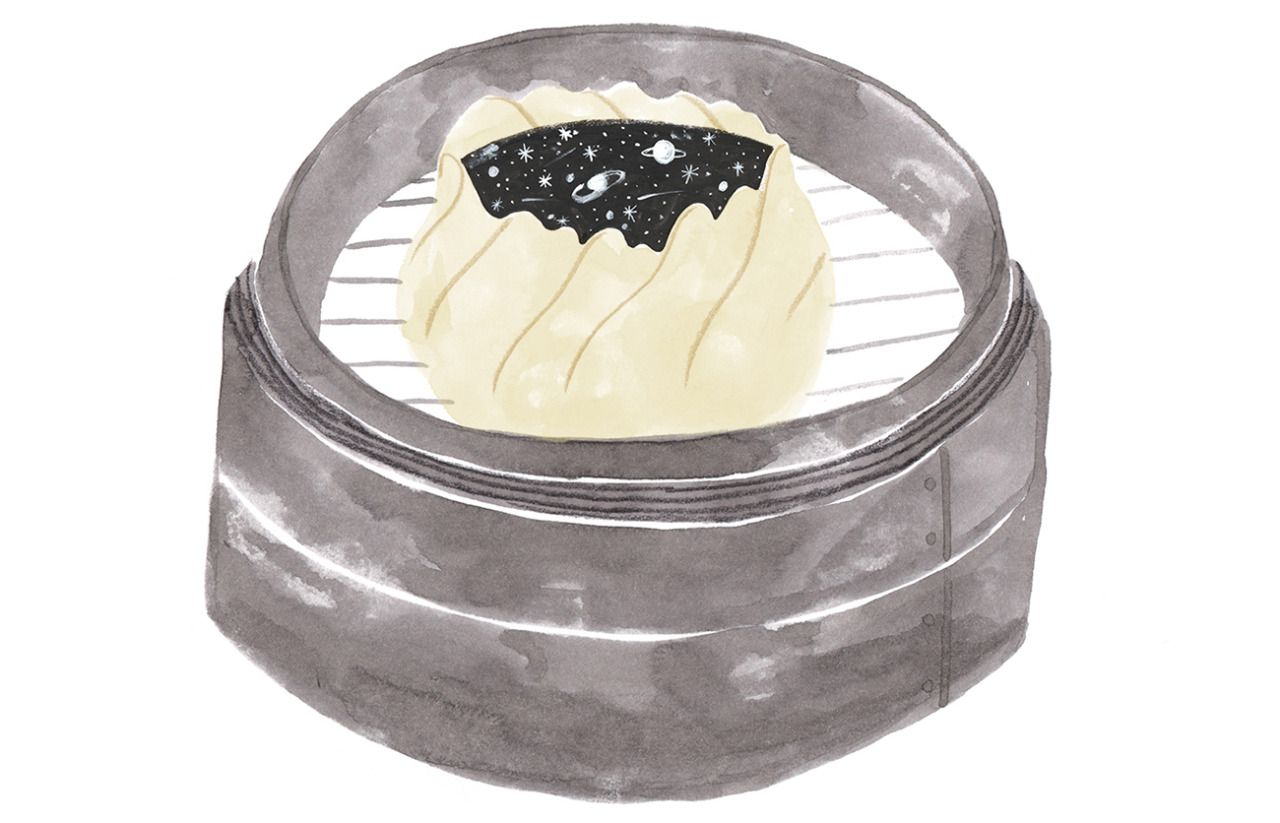 Is everything a dumpling? Aaron Thier explores the generality of the term in food history.Illustration by Kaye Blegvad.