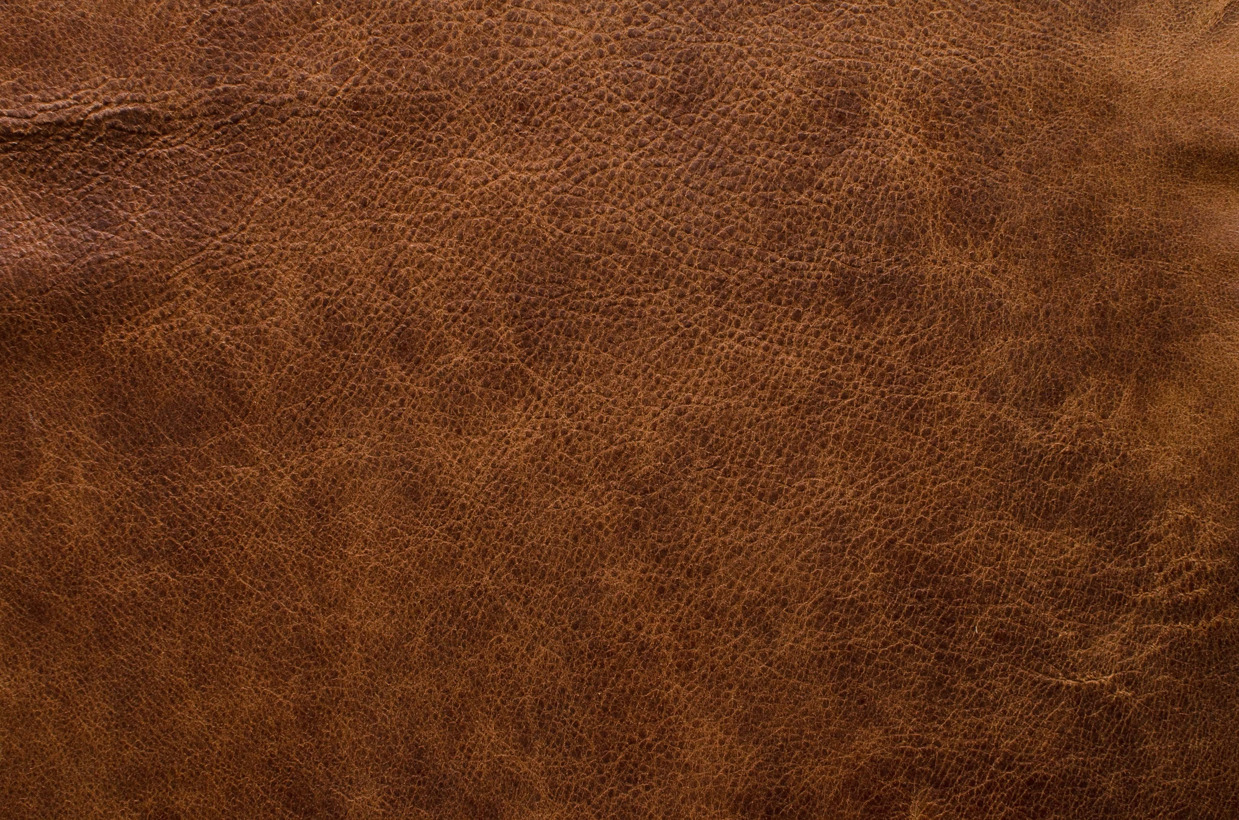 Leather Texture - Google Search  Textures  Leather -3511