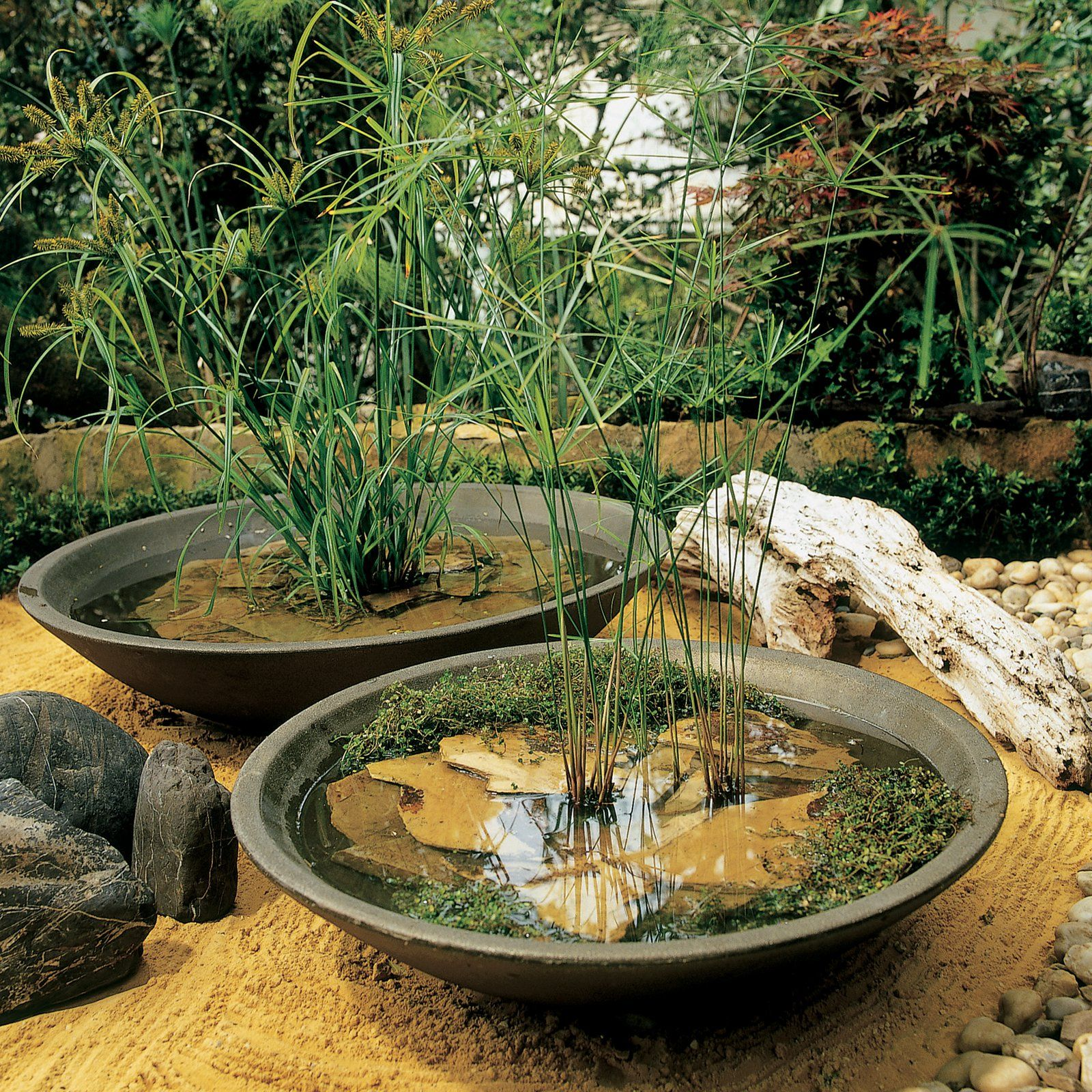 inspiration for diy cement planterCrescent Garden Montana Bowl