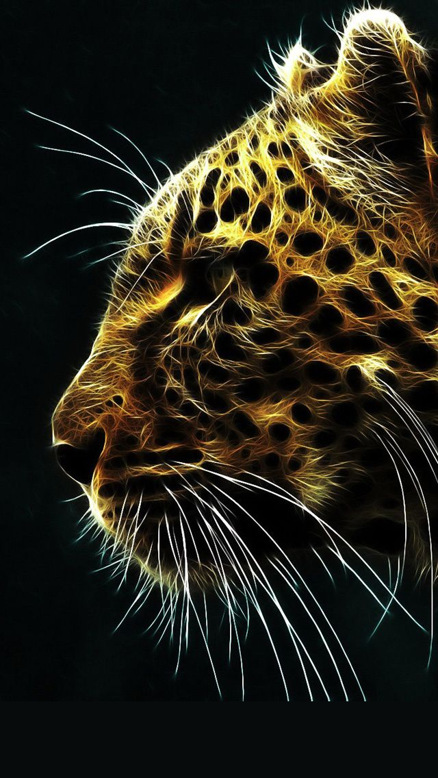 Download Iphone 5 Retina Display Hd Wallpapers Cool Iphone Wallpapers Hd Leopard Wallpaper Tiger Wallpaper