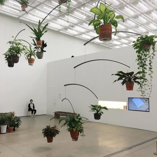 air garden (at 국립현대미술관 서울관 National Museum of Modern and Contemporary Art, Seoul)