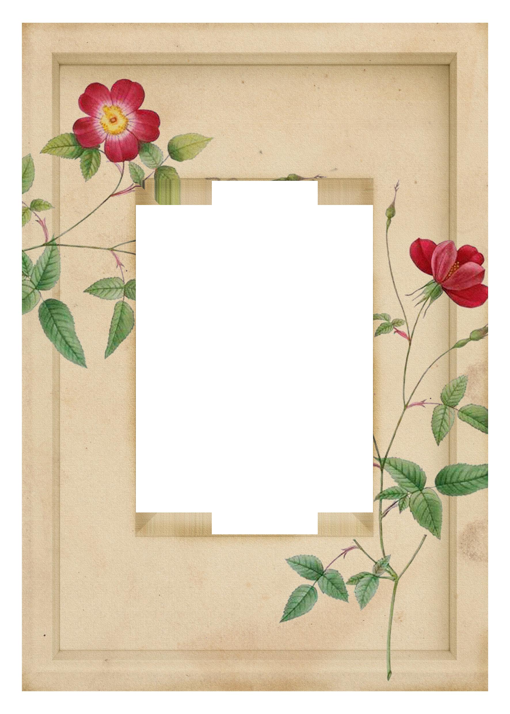 """1º de la coleccion de """"freebies frame floral"""""""