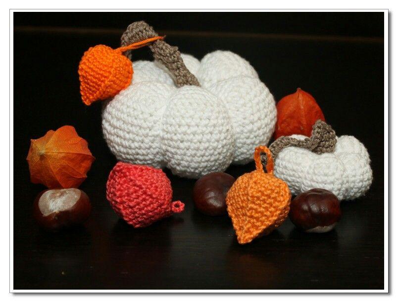 Herbst Häkeln Kürbis Häkeln Physalis Häkeln Crochet