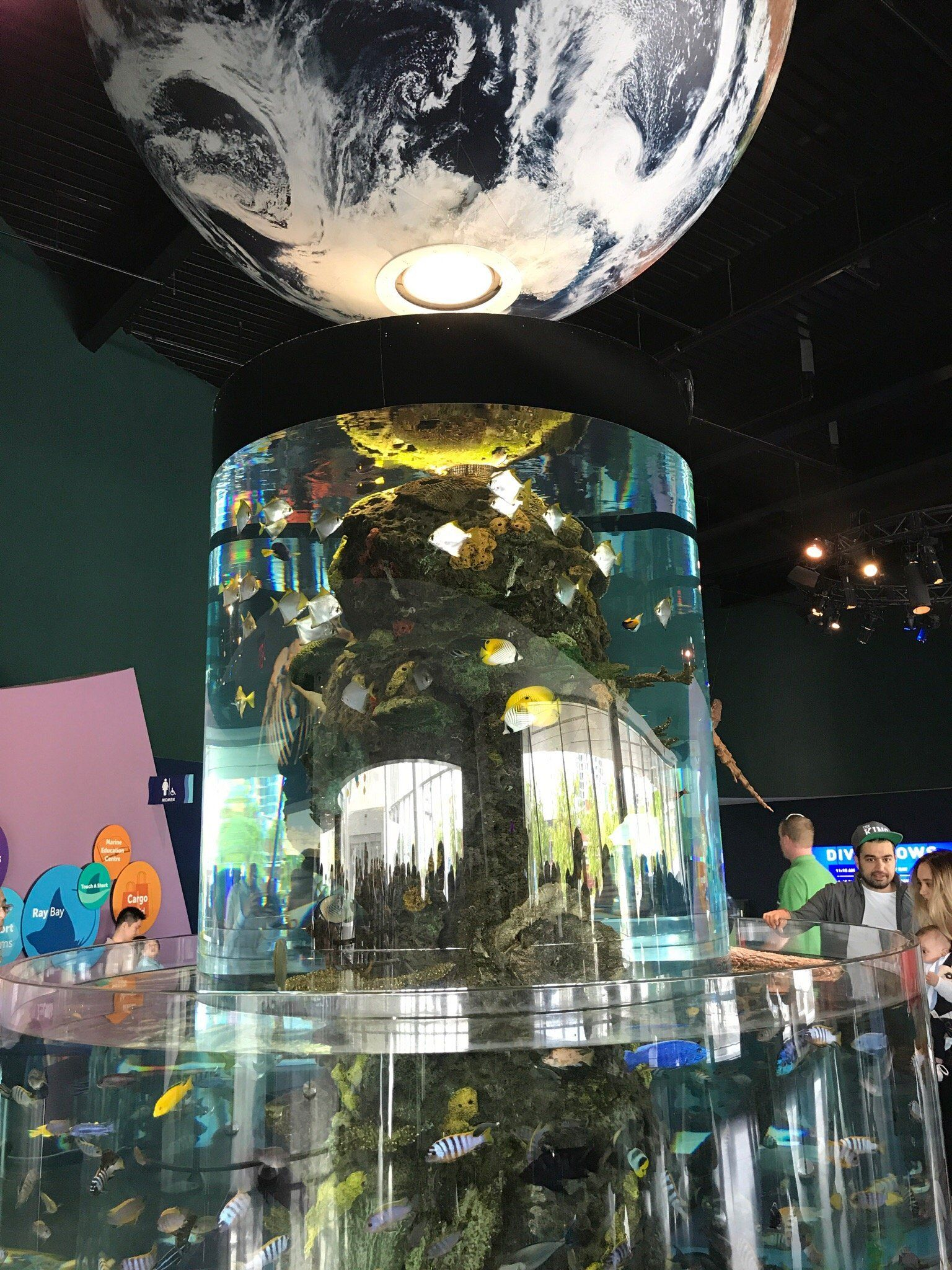 Ripley's Aquarium Of Canada in 2020   Ripley aquarium ...