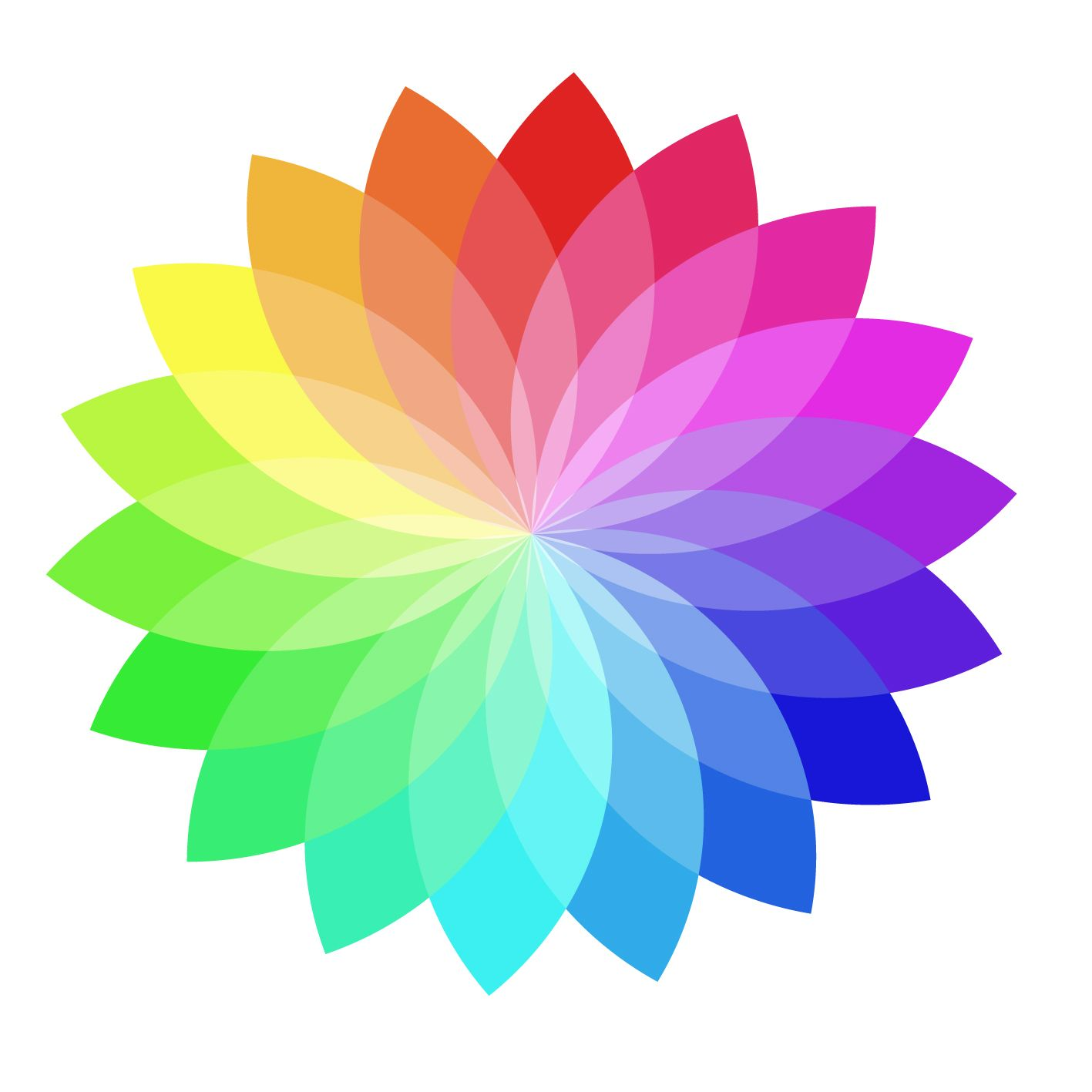 Colour Wheel Flower
