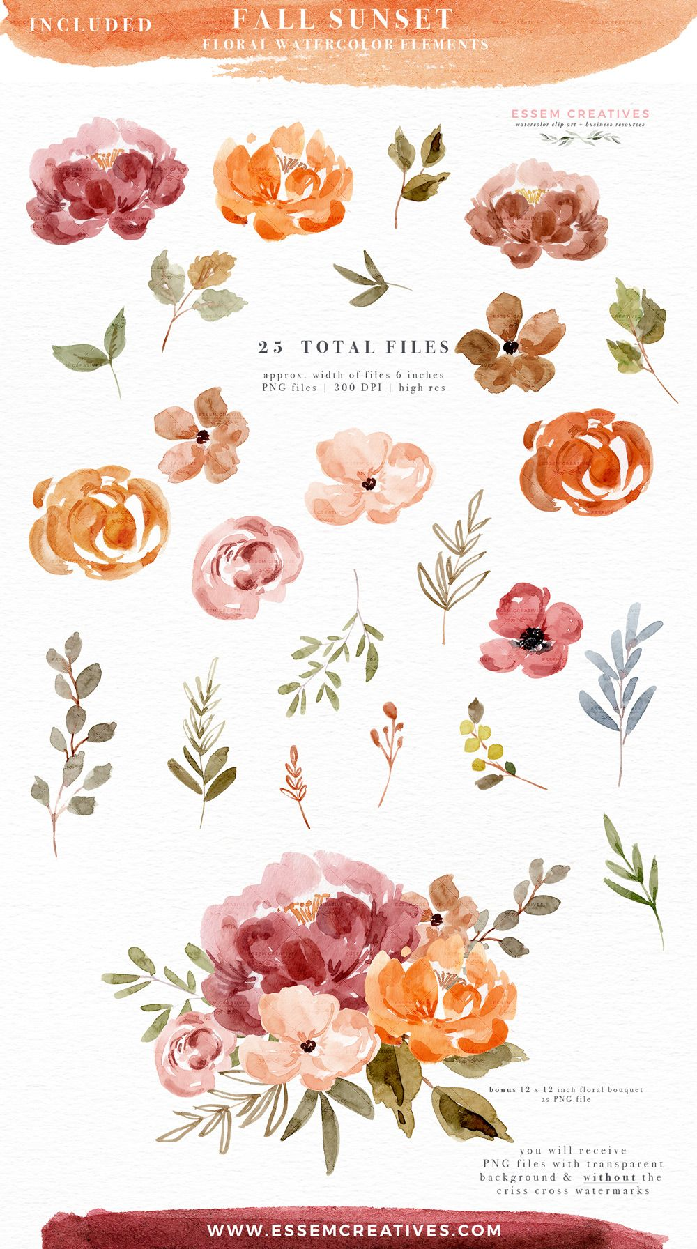 Fall Watercolor Flowers Clipart Graphics With Transparent
