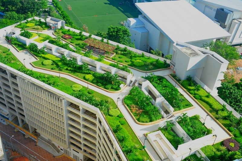 If it is a green roof, it will absorb the rain water by