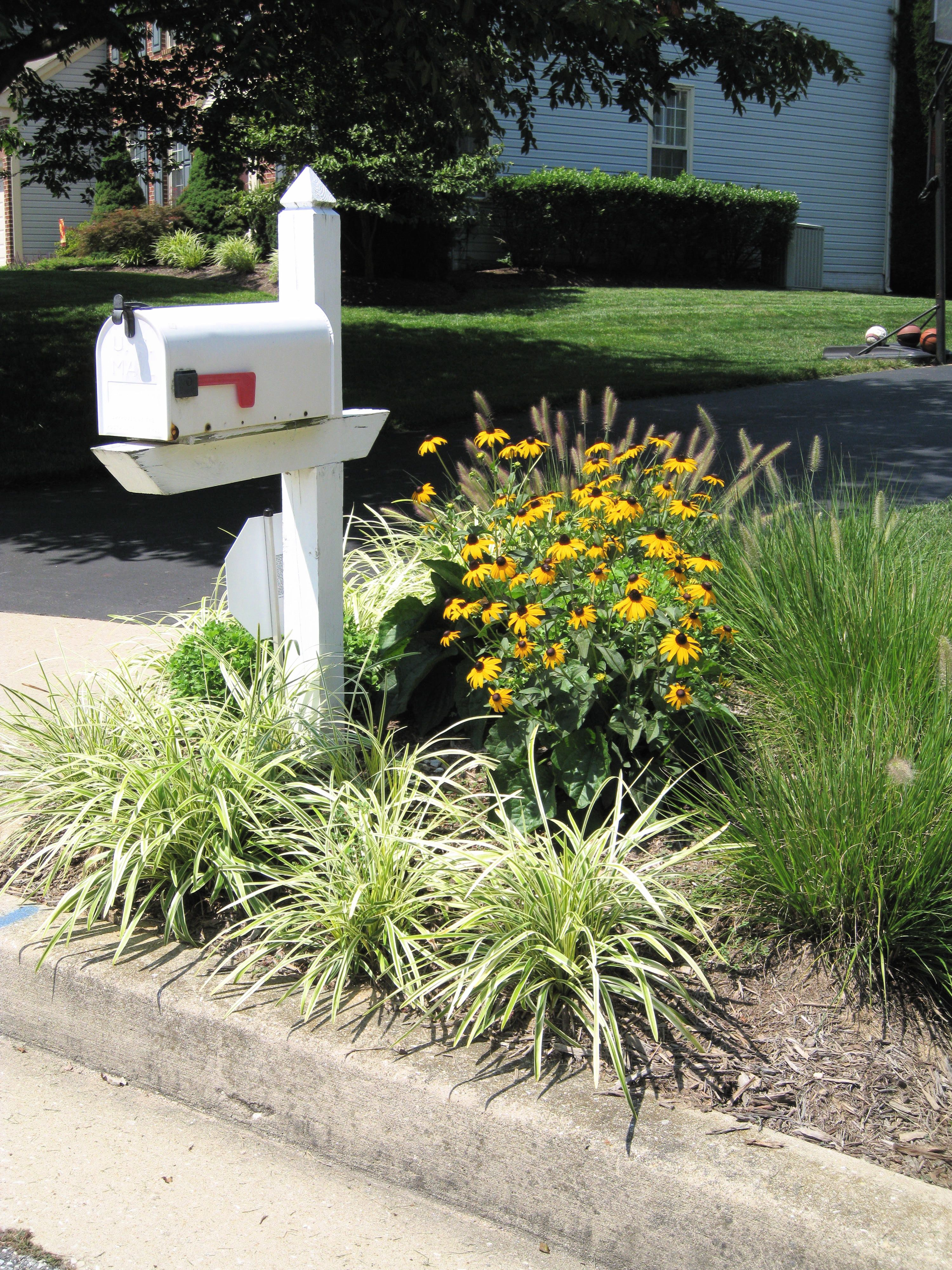 landscaping around mailbox post