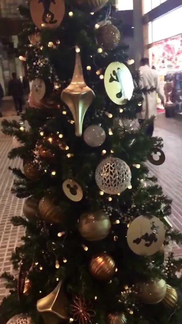 Fyuse - Christmas tree at Oazo