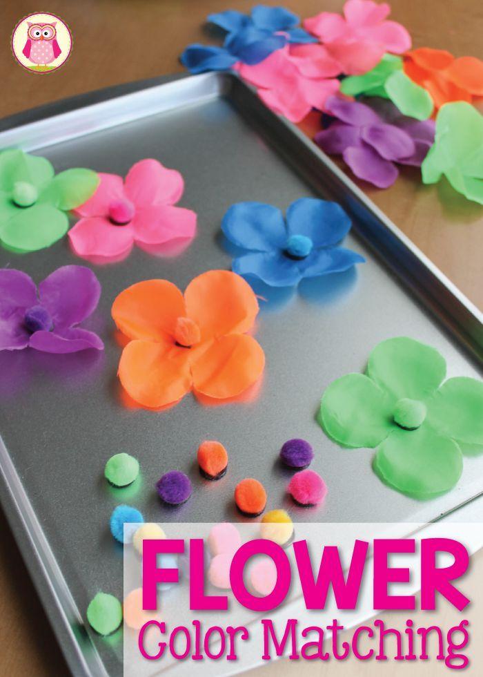 Pre Planned Flower Garden Designs: Flower Color Sorting Activities