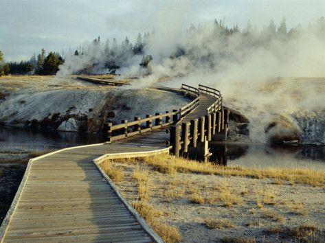 Image result for yellowstone  walkways