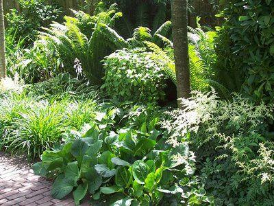 Schattenbeet mit Weide Schattengarten Pinterest Patios and - vorgarten anlegen nordseite